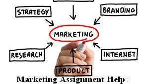 Article Analysis Business Assignment Help by experts